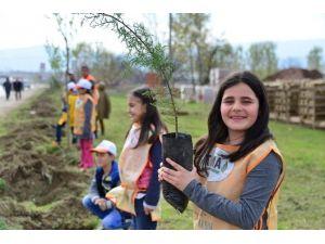Yüzüncü Yıl Bulvarı'na 4 Bin 350 Fidan