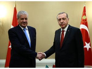 Cumhurbaşkanı Erdoğan, Rasmussen ve Sellal'i kabul etti