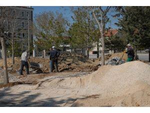 Belediye Sarı Çiçek Parkını Yeniliyor