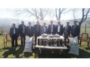 Çiftçilere Karabuğday Tohumu Dağıtıldı