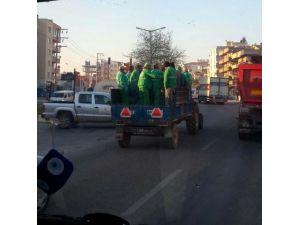 Milas'ta Temizlik İşçilerinin Nakil Şekli Tepki Çekti
