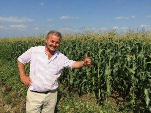 Tarsus Sebze Ve Meyve Halinde Ispanak Tartışması: 1 Ölü