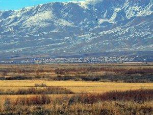 Ermeni güçlerin top atışında bir Azerbaycanlı hayatını kaybetti