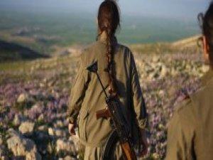 Başına 300 Bin TL Ödül Konulan PKK'lı Terörist Öldürüldü