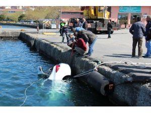 El Freni Çekilmeyen Park Halindeki Otomobil Denize Uçtu
