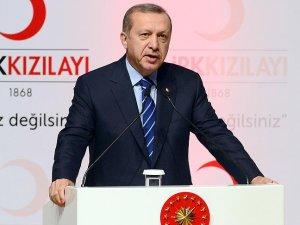 Cumhurbaşkanı Erdoğan: Terörle mücadele son tehdit ortadan kaldırılana kadar devam edecek