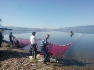 İznik Gölü'nde Gümüş Avı Başladı