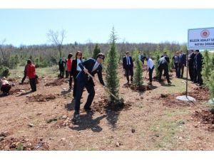 Bilecik Adalet Sarayı Çalışanları Hatıra Ormanı Oluşturuldu
