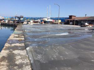 Akçakoca'nın Balıkçıları Limana Sahip Çıktı