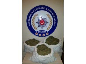 Şanlıurfa'da 32 Kilo Esrar Ele Geçirildi