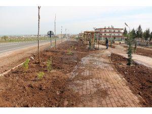 Özbek Parkında Çalışmalar Devam Ediyor
