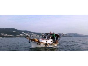 Siyanürden 10 Kat Daha Zehirli Olan Balık 2 Kişiyi Hastanelik Etti