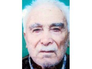 92 Yaşındaki Yaşlı Adam Ağaca Kendini Asarak İntihar Etti