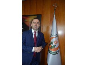 """""""Dondan Zarar Gören Fındıkta Henüz Hasar Tespiti Yapılmadı"""""""
