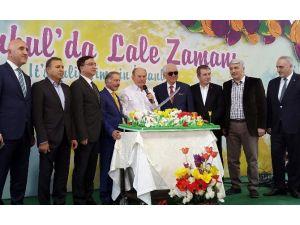 11'inci İstanbul Lale Festivali Başladı