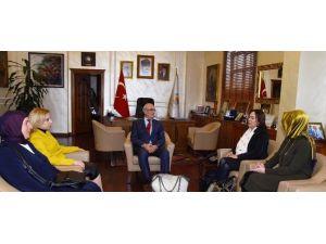 Başkan Yılmaz'a Ziyaretler