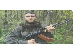 8 Polisin Şehit Olduğu Saldırının Teröristleri Tespit Edildi