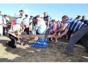 Bodrum'da Pedasa Festivali Başlıyor