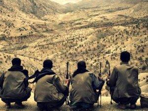 Korucuları Çembere Almaya Çalışan 2 Terörist Öldürüldü