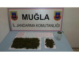 Marmaris'te uyuşturucu operasyonu