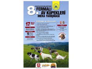 8. Fermalı Av Köpekleri Yarışması Hafta Sonu Yapılacak