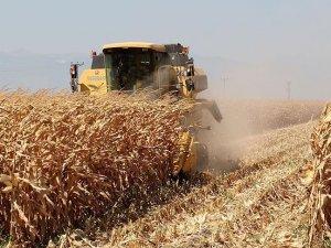 Türkiye önemli tarım ürünlerinde kendine yetiyor