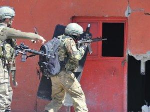 Yüksekova'da 7 terörist teslim oldu