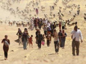 Binlerce Suriyeli Türkiye Sınırına Geliyor