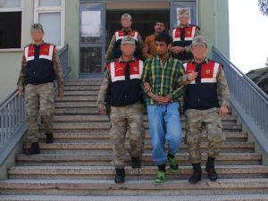 Osmaniye'de 2 terörist yakalandı