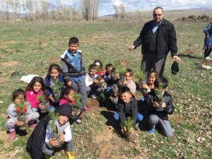 Öğrencilerin Yeşil Doğa Projesi