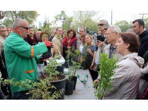 Çankaya Belediyesi'nden 300 Bahçıvan Daha