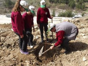 Feke'de Fidanlar Toprakla Buluştu