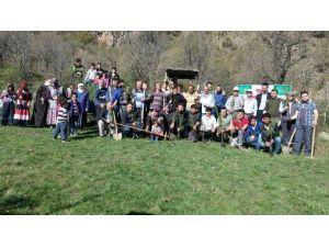 Tosya'da Ağaç Dikim Etkinliği Düzenledi