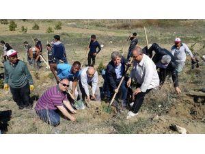 Yabancı Uyruklu Öğrenciler Şehitlik Ormanına Fidan Dikti