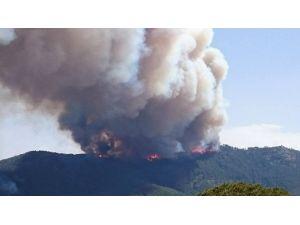 Madran Dağı Alevlere Teslim Oldu
