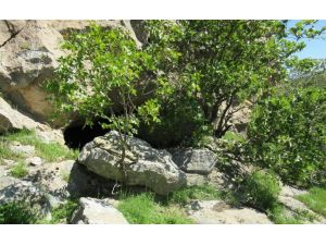 Terör örgütü PKK'ya ait sığınaklar imha edildi