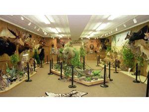 Kepez'e Doğal Hayat Müzesi