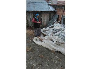 Kastamonu köylüsü Nisan karının şokunu yaşadı