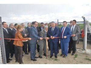 Ajans Desteği İle Kazan'da Sulu Tarım