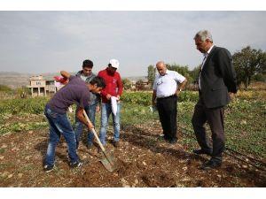 Liceli Çiftçiler Ege'de Organik Tarım Alanlarını Gezecek