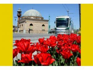 """Büyükşehir'den """"Çiçek Gibi Konya"""" Fotoğraf Yarışması"""