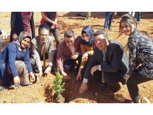 Sosyal Bilimler MYO Öğrencilerinden Ağaç Dikimi Etkinliği