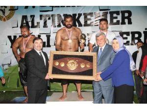 8. SEKA Park Altın Kemer Yağlı Güreşleri 7 Mayıs'ta Yapılacak