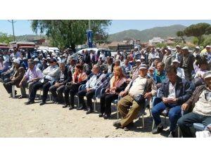 İzmir Büyükşehir Kiraz'da İkinci Kez Koyun Keçi Dağıttı