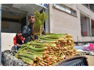 Yayla Muzu Tatvan'da Tezgahlardaki Yerini Aldı