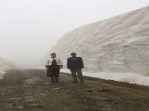 Batı'da Bahar, Doğu'da Kar Çalışması