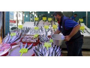 Sezon Kapandı, Balık Fiyatları Tavan Yaptı