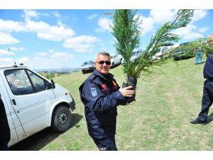 Ankara İtfaiyesi'nden Hatıra Ormanı