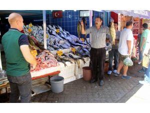 Balıkçıların umudu 1 Eylül