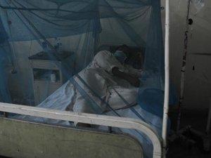 Vietnam'da deng humması 6 can aldı